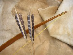 "primitive arrows with the ""Soltice"" osage bow"